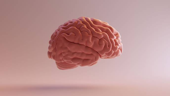 To the Brain, Straight from the Vein: IV Treatment for TBI