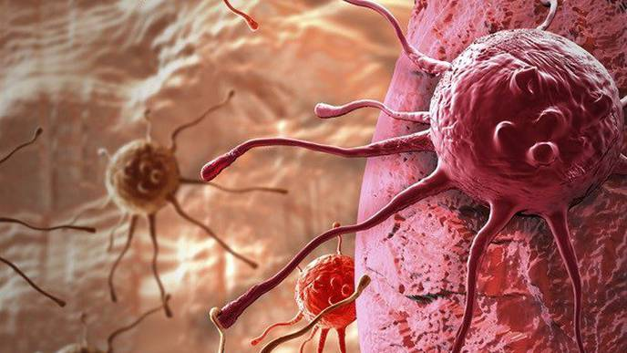 Study Reveals Lower Rates of Cancer & Early Death in Adventists