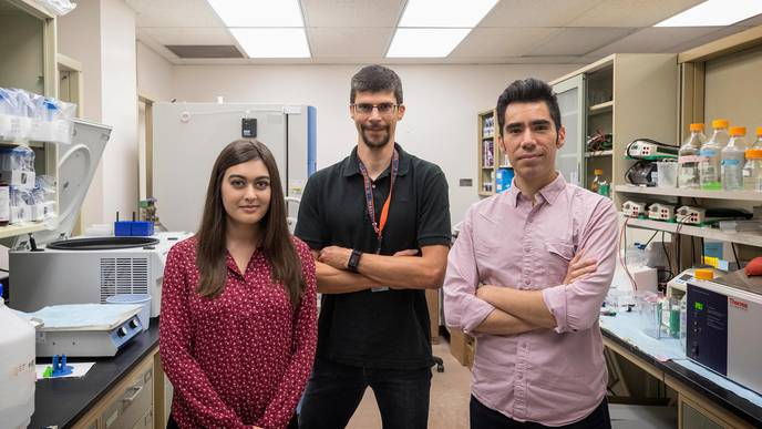 UVA Identifies Surprising Contributor to Multiple Sclerosis
