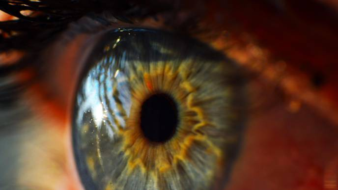 Researchers Find Drug Used Widely to Treat Eye Condition Has 'No Benefit'