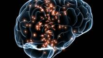 Imaging Measures Toxicity of Alzheimer's and Parkinson's Proteins