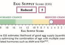 OAR Sample Report - 28YO Reduced Score