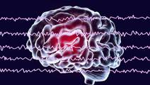 Memories Are Strengthened via Brainwaves Produced During Sleep