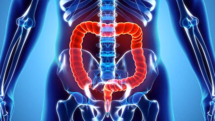 Microbiome Provides New Clues to Determining Development of Colon Cancer