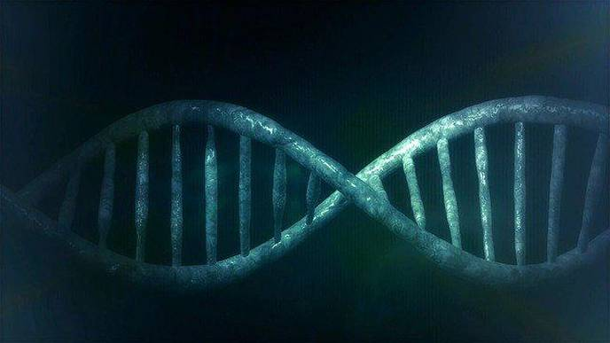 DNA Testing Could Help in COVID-19 Patient Care