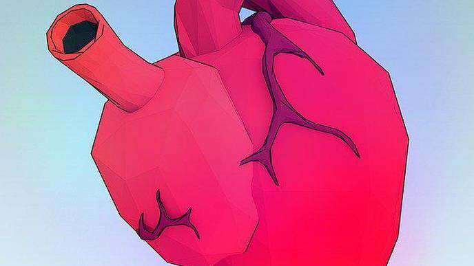 Women Undergo Less Aggressive Open Heart Surgery, Experience Worse Outcomes Than Men