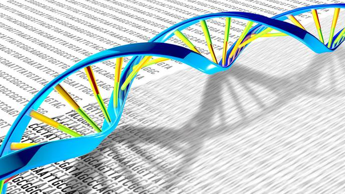 DNA Fracturing Rewires Gene Control in Cancer