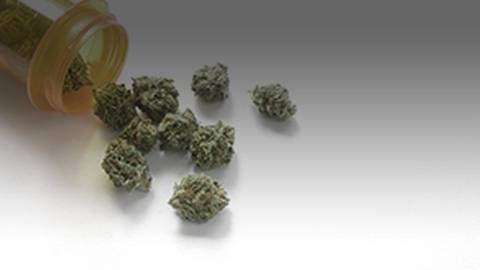 Facts, Myths, and Misconceptions of Medical Marijuana