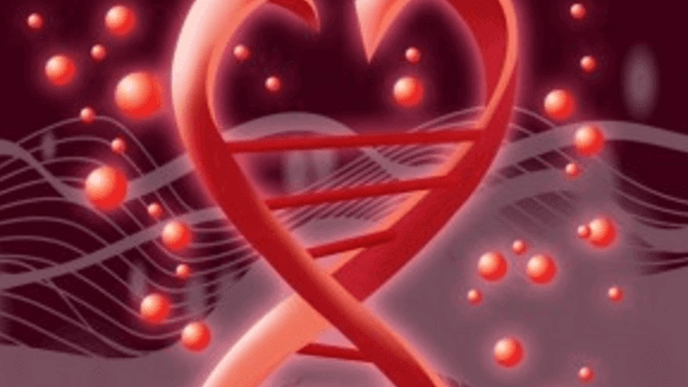 Your Genes Could Impact the Quality of Your Marriage