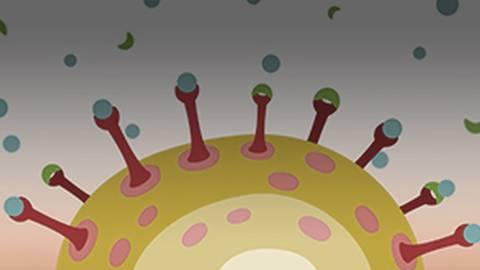 EndoShare: Patient-Centered Management of Endometriosis