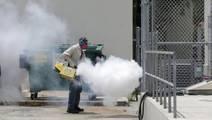 Why the Response to Zika Failed Millions