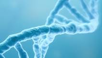 5 Serious Health Conditions that can be Passed Down through your Genes