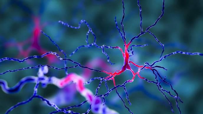 Prostate Drug May Slow Parkinson's Disease