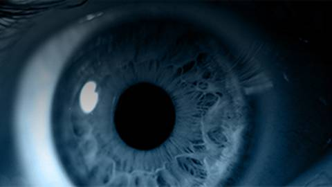 The Causes and Treatment of Retinal Detachments