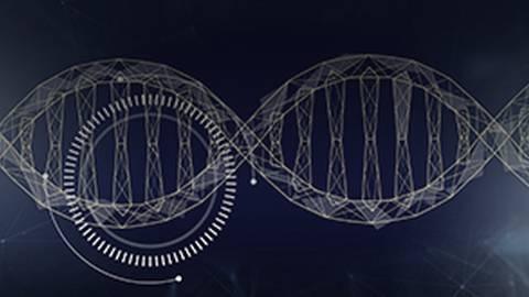 Exploring the Molecular Mechanism of MSI-H Tumors