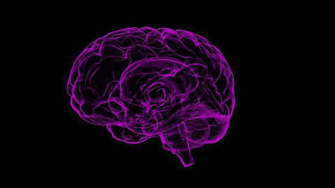 Alternative Model of Alzheimer's Emphasizes Different Set of Mechanisms That Lead to Neurodegeneration