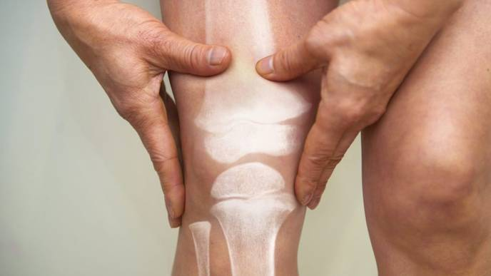 New Method Could Help Regrow Cartilage in the Joints