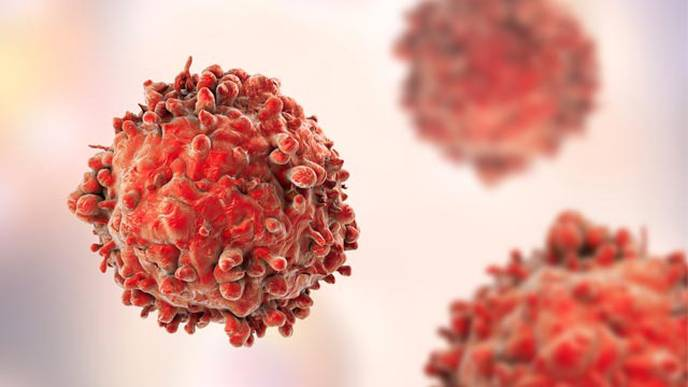 1 Dose of HPV Vaccine as Effective as Multiple