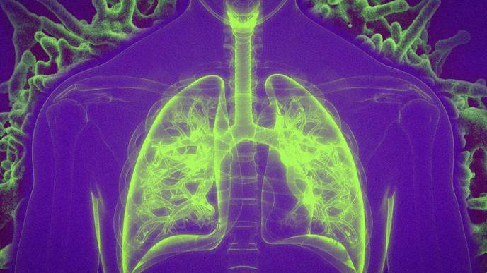 Vaccination by Inhalation Boosts Immune Responses to Respiratory Infections & Lung Cancer