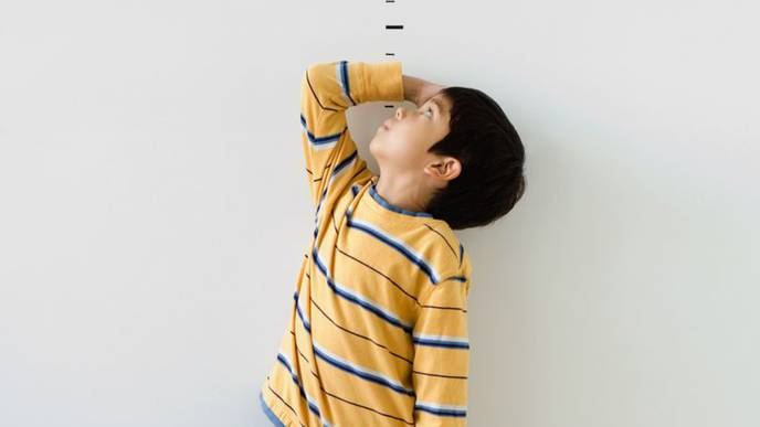 What Factors Influence a Person's Height?