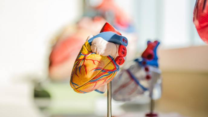 Aspirin Preferred to Prevent Blood Clots in Kids After Heart Surgery