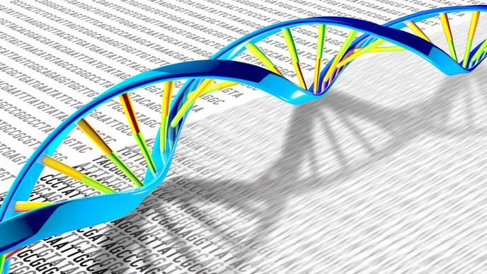 DNA Fracturing Rewires Gene Control in Cancer