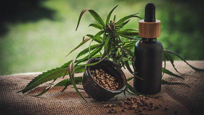 CBD for COVID-19: Marijuana Ingredient May Prevent Virus from Causing Lung Damage