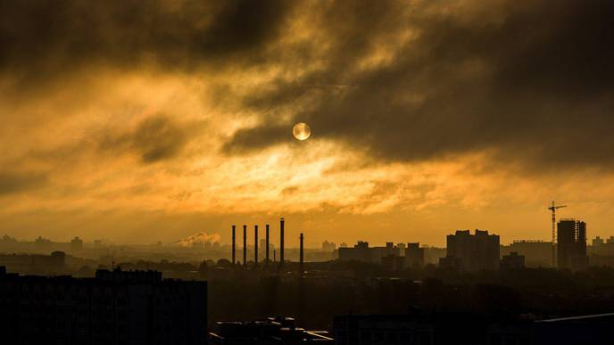 Exposure to Air Pollution During Pregnancy Is Associated with Growth Delays