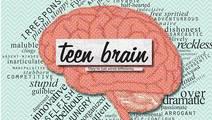 "The Impulsive ""Teen Brain"" Isn't Based in Science"