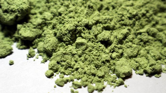Algae Shown to Improve Gastrointestinal Health