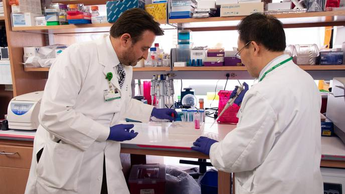 Treatment Target in Acute Kidney Injury Prevention Revealed