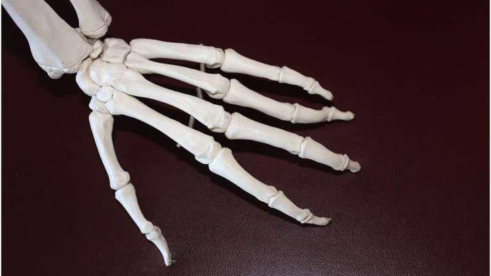 Researchers Discover Potential New Approach to Treating Psoriatic Joint Inflammation