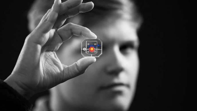 Blinking Eye-on-a-Chip Used for Disease Modeling & Drug Testing