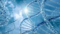 Genetic Model Predicts Risk for Common Deadly Diseases