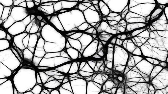 Superstructures Formed by 'Walking' Molecules Could Help Create Neurons for Regenerative Medicine
