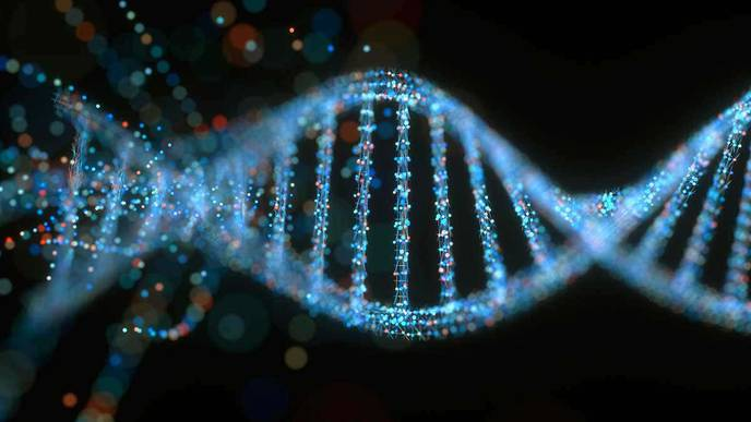 Stretches of Repeating DNA Predispose to Systemic Sclerosis