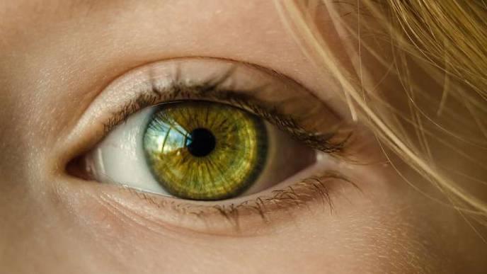 AI to Bring Sharper Focus to Eye Testing