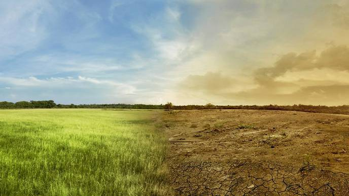 Public Health Officials Unprepared for Climate-Related Diseases