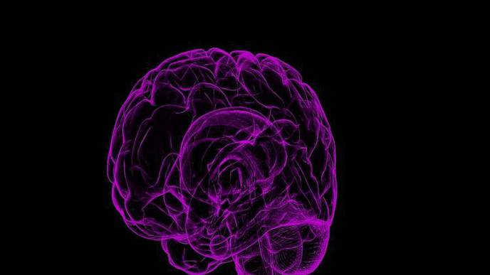 Mid-Life CVD Prevention May Protect Against Later Dementia